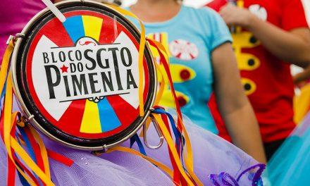 02-24 Sargento Pimenta carnival parad