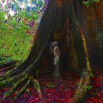 """04-27 Collective exhibition """"Selva"""" (Jungle)"""