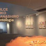 "Exhibition ""ANTOLOGIA"" by Nilce Eiko Hanashiro"