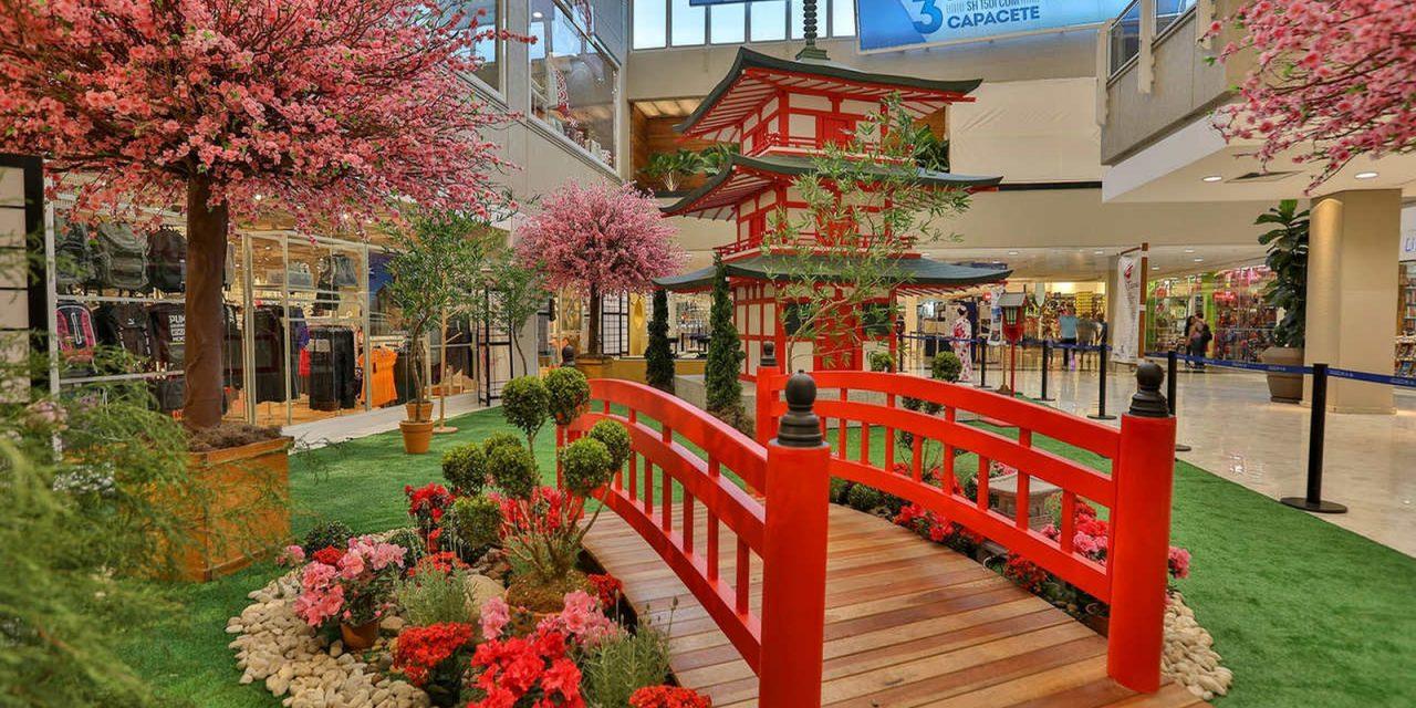 """Festival """"Tesouros do Japão"""" (Treasures of Japan)"""