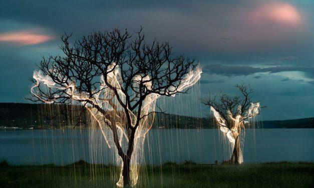"""Photographic exhibition """"Dreamscape"""" by Vitor Schietti"""