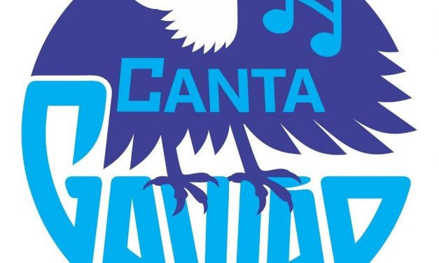 Musical event Canta Gavião has second edition in Brasília