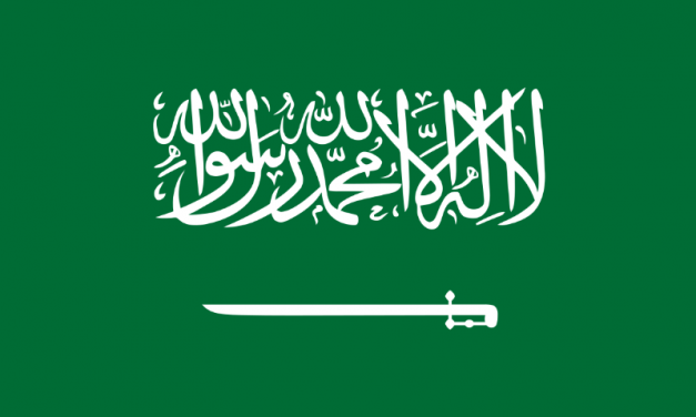 Kingdom of Saudi Arabia can be an example in recognizing the rights of volunteer workers.