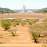 Brasilia's dry season has arrived, here are some precautions you should take.