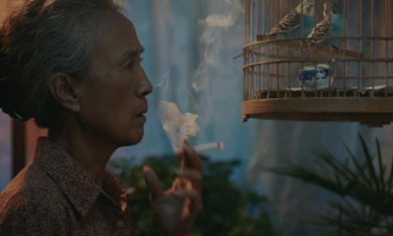 International short film festival available in a digital format.
